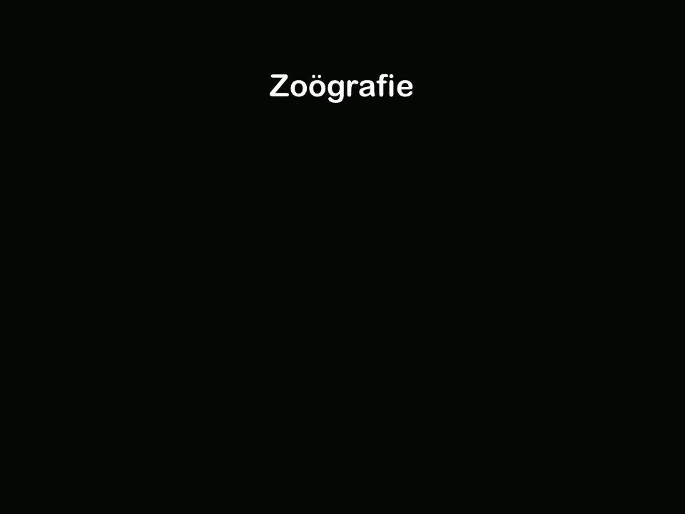 Zoögrafie