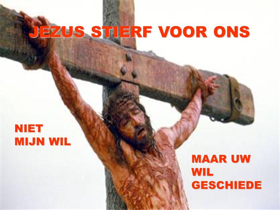 JEZUS STIERF VOOR ONS NIET MIJN WIL MAAR UW WIL GESCHIEDE