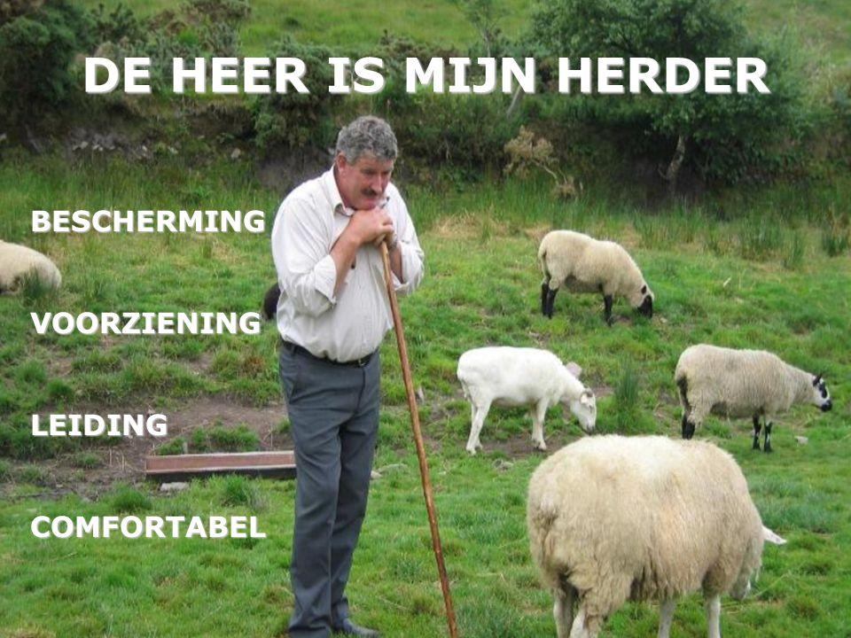 DE HEER IS MIJN HERDER BESCHERMINGVOORZIENINGLEIDINGCOMFORTABEL