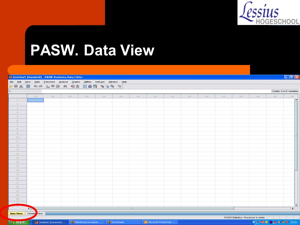 PASW. Data View