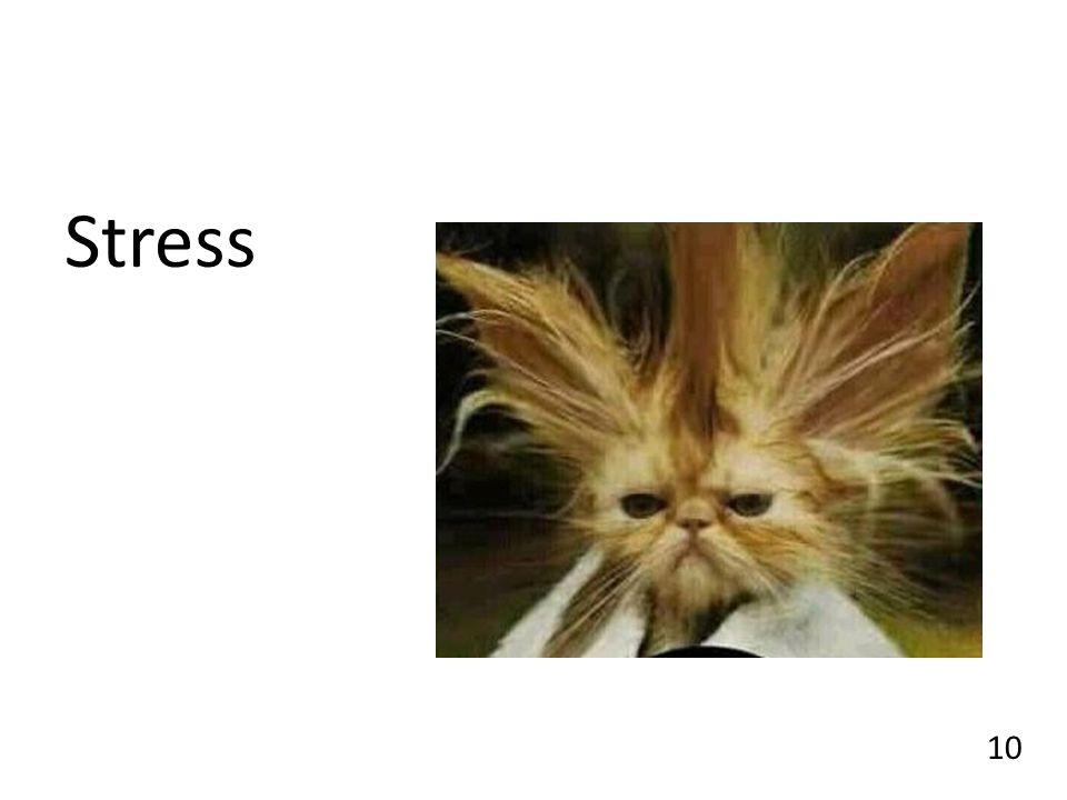 Stress 10