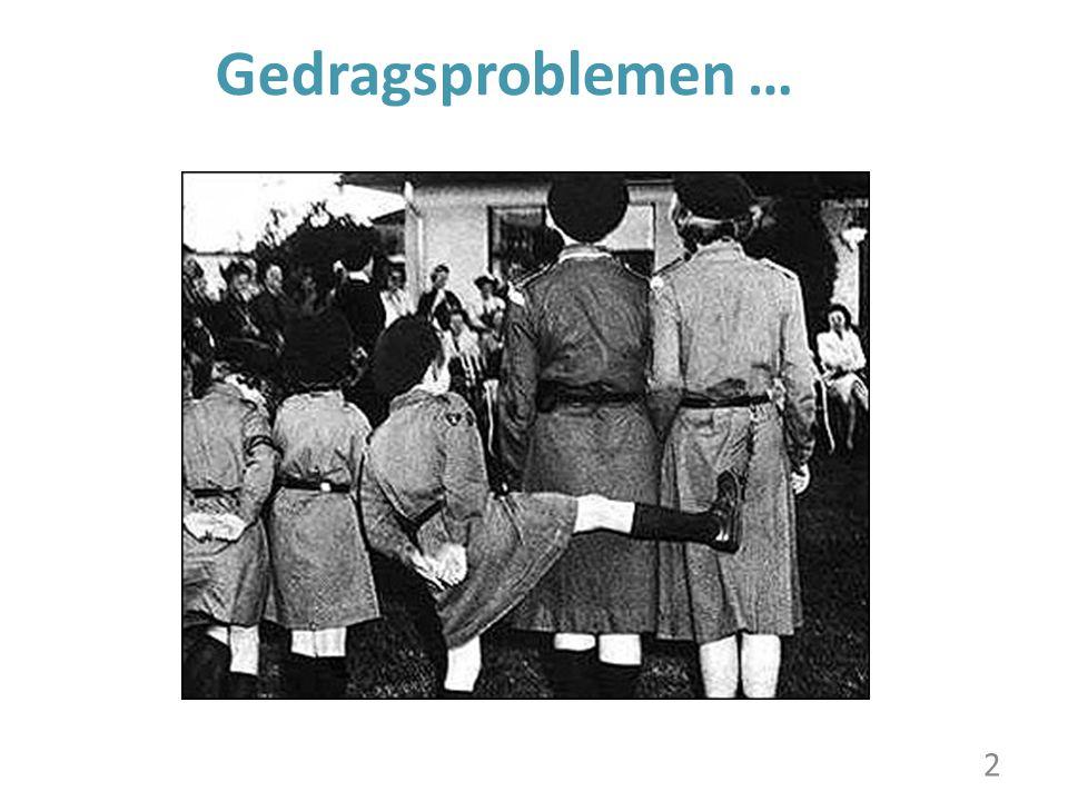 Gedragsproblemen … 2