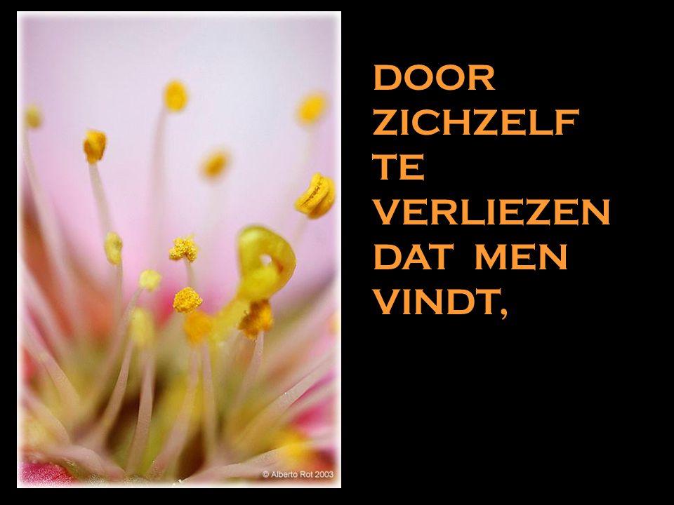 W ANT HET IS DOOR TE GEVEN DAT MEN KRIJGT,