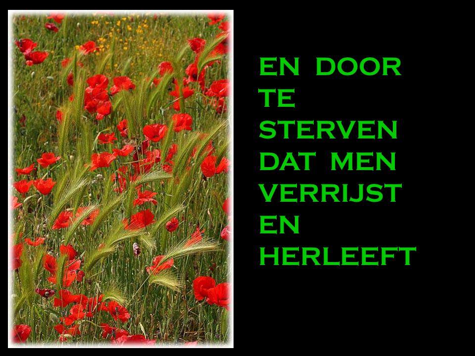DOOR TE VERGEVEN DAT MEN VERGEVING BEKOMT