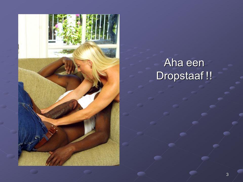 3 Aha een Dropstaaf !!