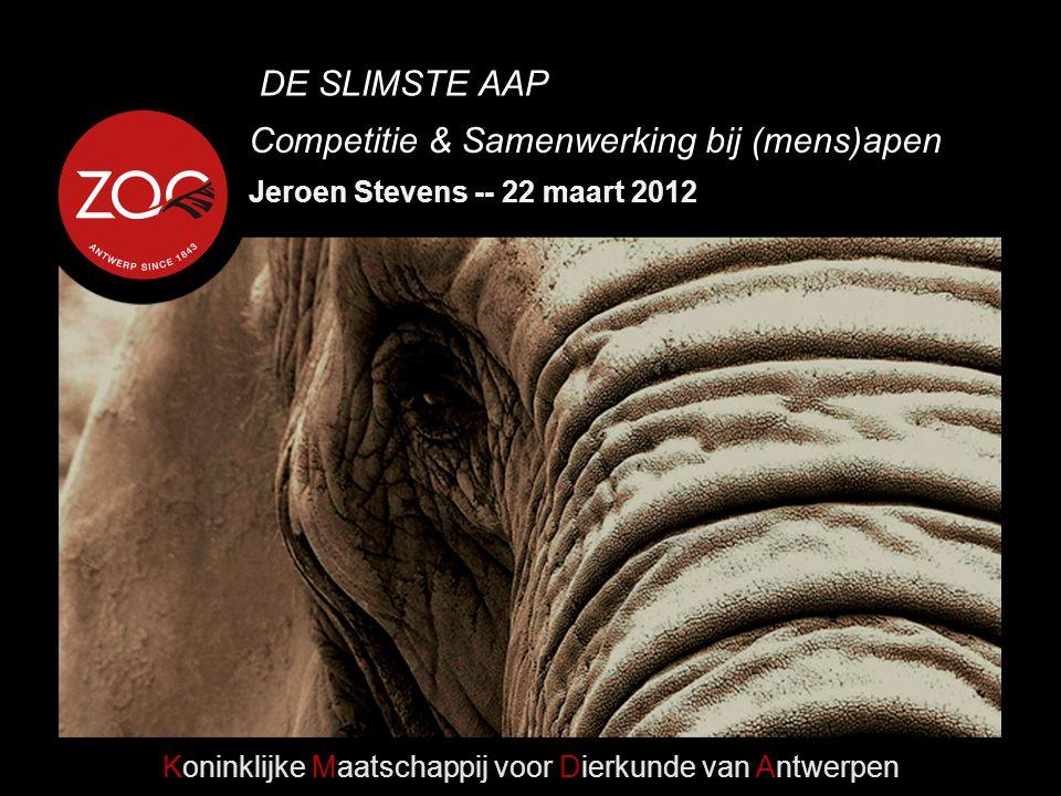 Competitie & Samenwerking bij (mens)apen Koninklijke Maatschappij voor Dierkunde van Antwerpen Jeroen Stevens -- 22 maart 2012 DE SLIMSTE AAP