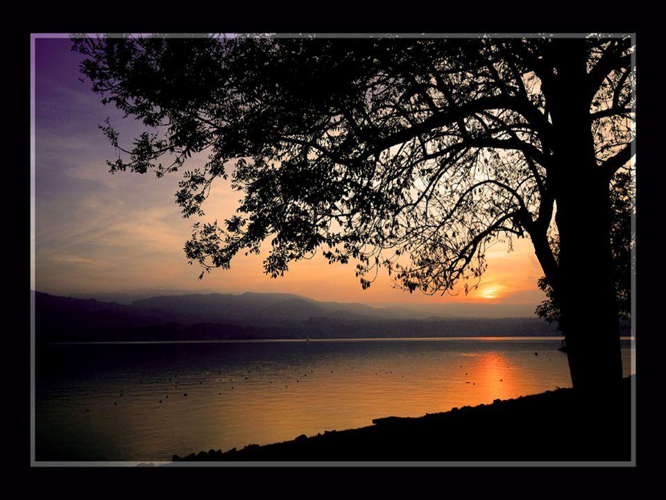 Ouderdom laat alles mooier lijken. Hij heeft het effekt, van een ondergaande zon, op de deemstering van de herfst.