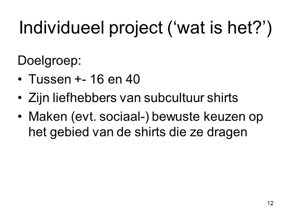 12 Doelgroep: Tussen +- 16 en 40 Zijn liefhebbers van subcultuur shirts Maken (evt. sociaal-) bewuste keuzen op het gebied van de shirts die ze dragen