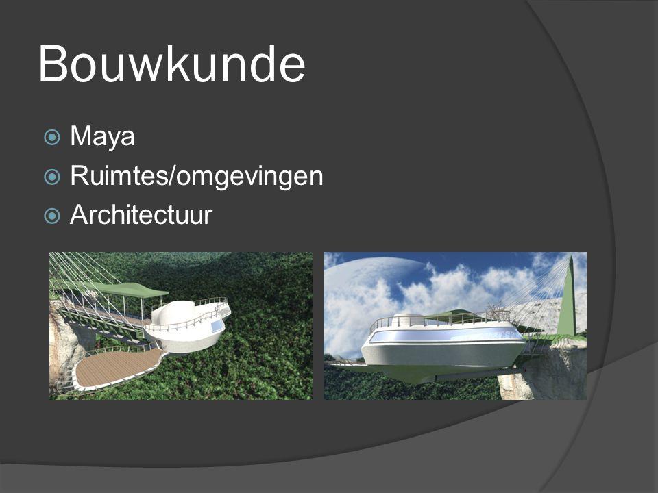 Bouwkunde  Maya  Ruimtes/omgevingen  Architectuur