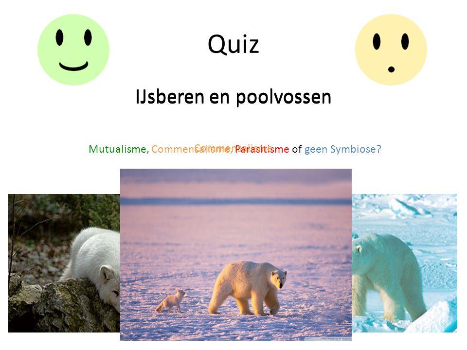 Quiz IJsberen en poolvossen Mutualisme, Commensalisme, Parasitisme of geen Symbiose? IJsberen en poolvossen Commensalisme