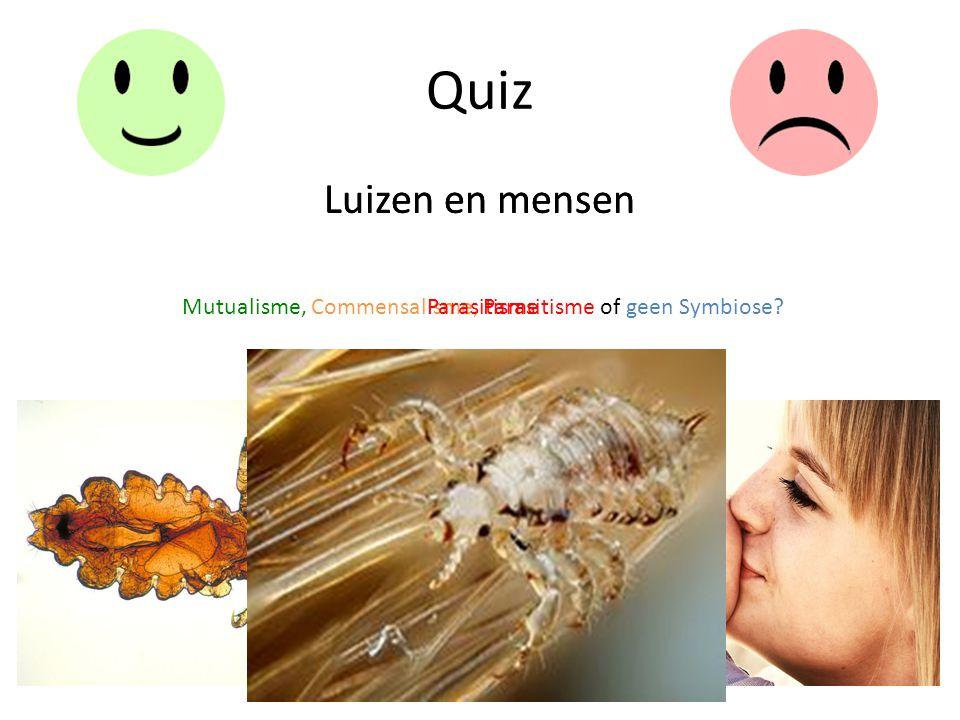 Quiz Luizen en mensen Mutualisme, Commensalisme, Parasitisme of geen Symbiose? Luizen en mensen Parasitisme