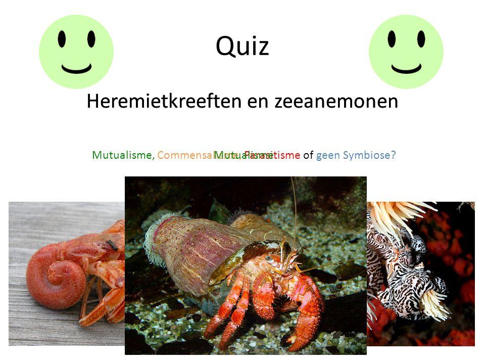 Quiz Heremietkreeften en zeeanemonen Mutualisme, Commensalisme, Parasitisme of geen Symbiose? Heremietkreeften en zeeanemonen Mutualisme