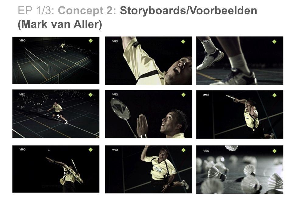 EP 1/3: Concept 2: Storyboards/Voorbeelden (Mark van Aller)