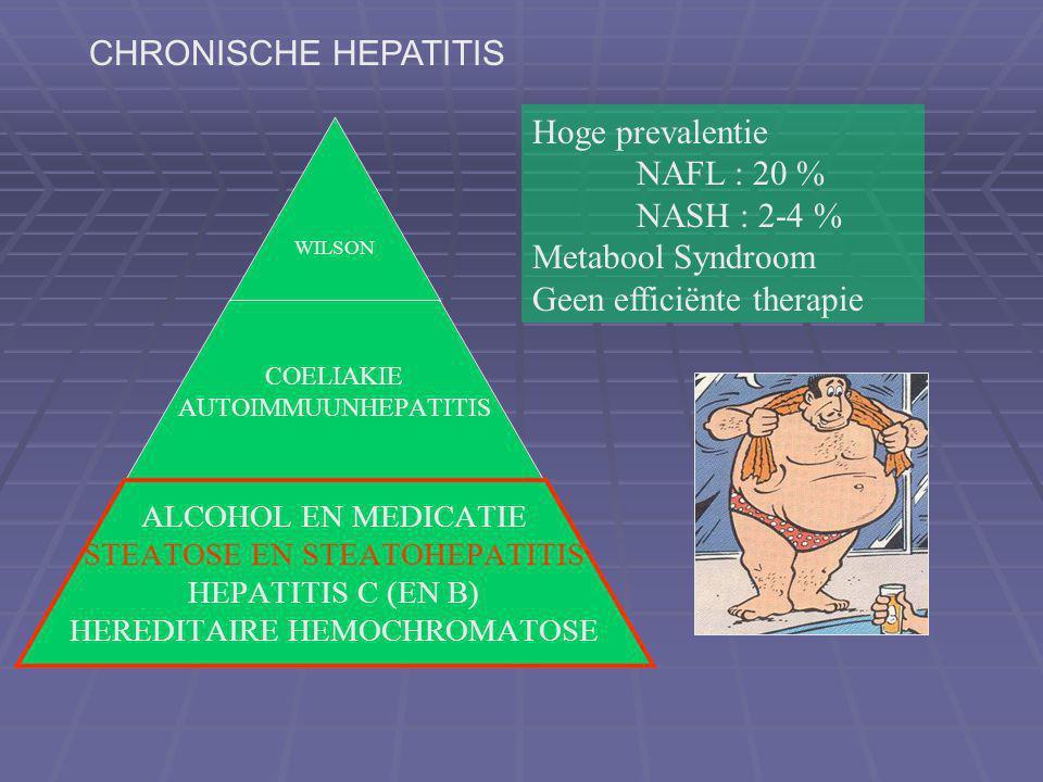 WILSON COELIAKIE AUTOIMMUUNHEPATITIS ALCOHOL EN MEDICATIE STEATOSE EN STEATOHEPATITIS HEPATITIS C (EN B) HEREDITAIRE HEMOCHROMATOSE Hoge prevalentie NAFL : 20 % NASH : 2-4 % Metabool Syndroom Geen efficiënte therapie CHRONISCHE HEPATITIS