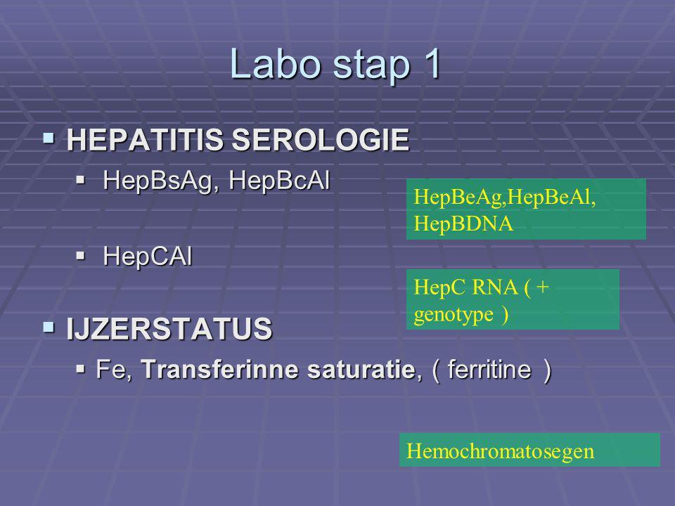 Labo stap 1  HEPATITIS SEROLOGIE  HepBsAg, HepBcAl  HepCAl  IJZERSTATUS  Fe, Transferinne saturatie, ( ferritine ) HepBeAg,HepBeAl, HepBDNA HepC RNA ( + genotype ) Hemochromatosegen