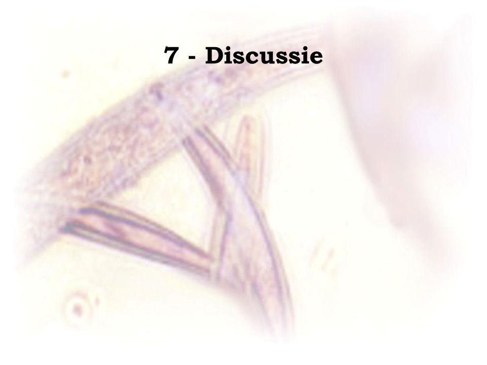 7 - Discussie