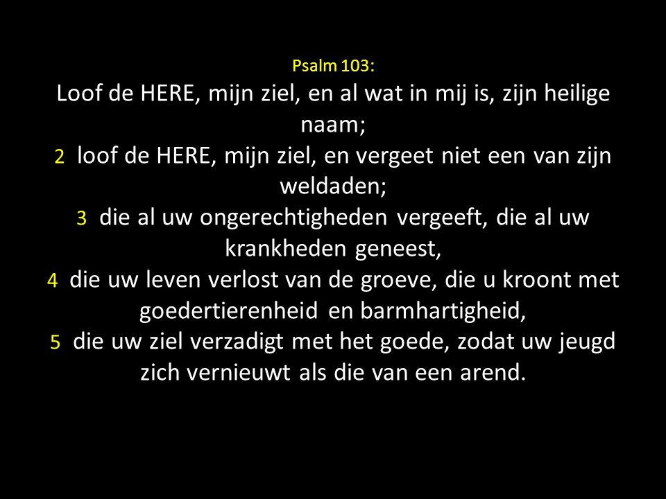 Psalm 103: Loof de HERE, mijn ziel, en al wat in mij is, zijn heilige naam; 2 loof de HERE, mijn ziel, en vergeet niet een van zijn weldaden; 3 die al