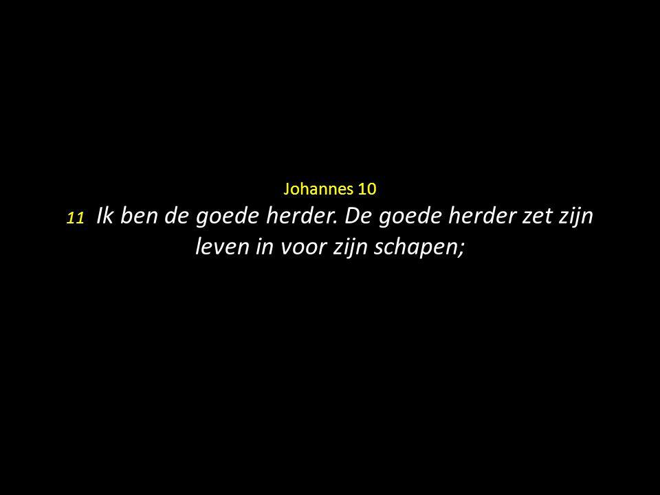 Johannes 10 11 Ik ben de goede herder. De goede herder zet zijn leven in voor zijn schapen;