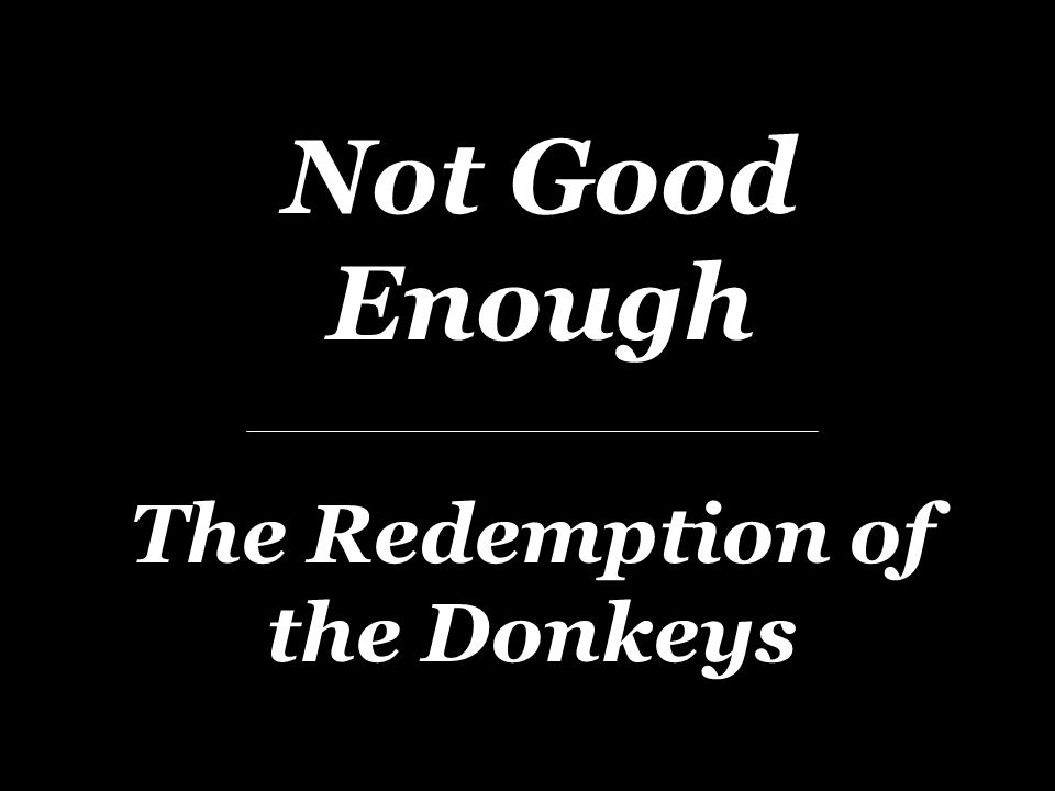 Not Good Enough The Redemption of the Donkeys