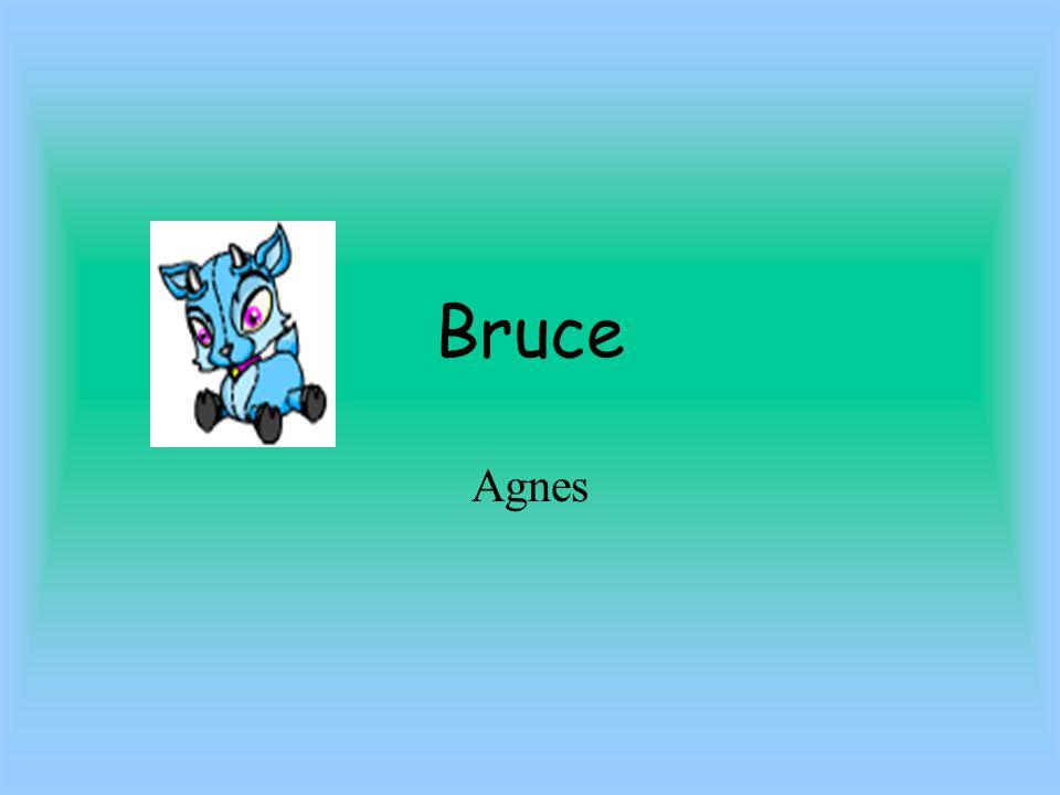 Bruce Agnes