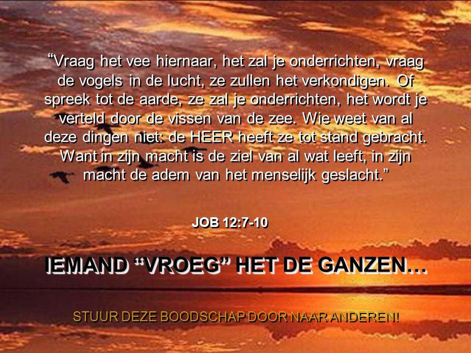 …om te leren van Gods geweldige schepping; je moet alleen maar lang genoeg stil staan om te observeren en God toe te staan Zijn wonderen aan je te ope