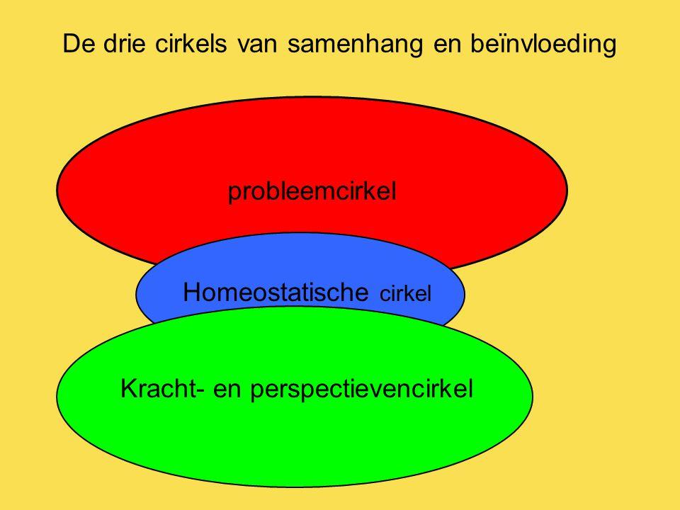 De drie cirkels van samenhang en beïnvloeding probleemcirkel Homeostatische cirkel Kracht- en perspectievencirkel