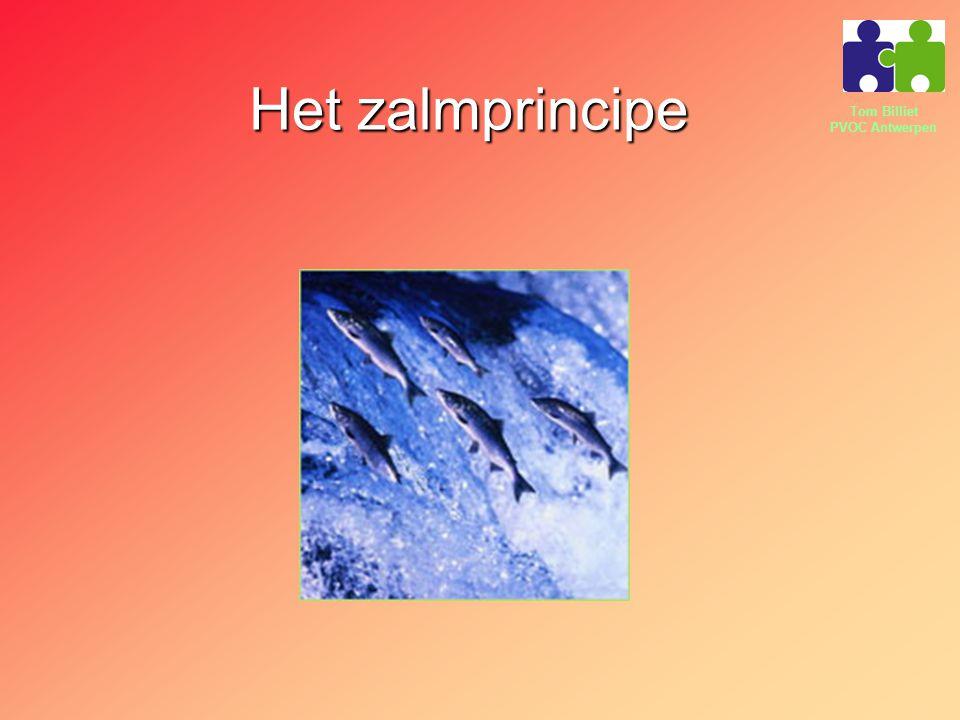 Tom Billiet PVOC Antwerpen Het zalmprincipe