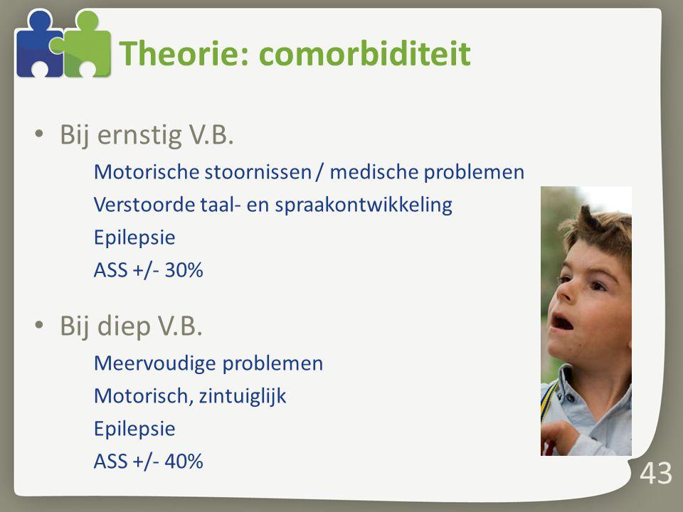 Theorie: comorbiditeit Bij ernstig V.B.