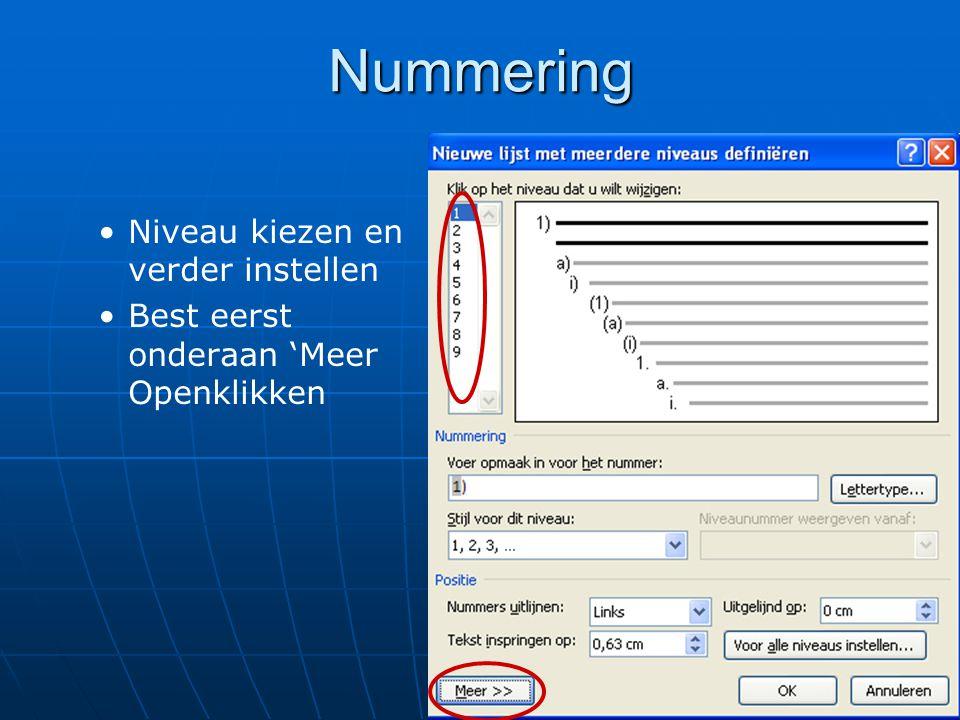 Nummering Niveau kiezen en verder instellen Best eerst onderaan 'Meer Openklikken