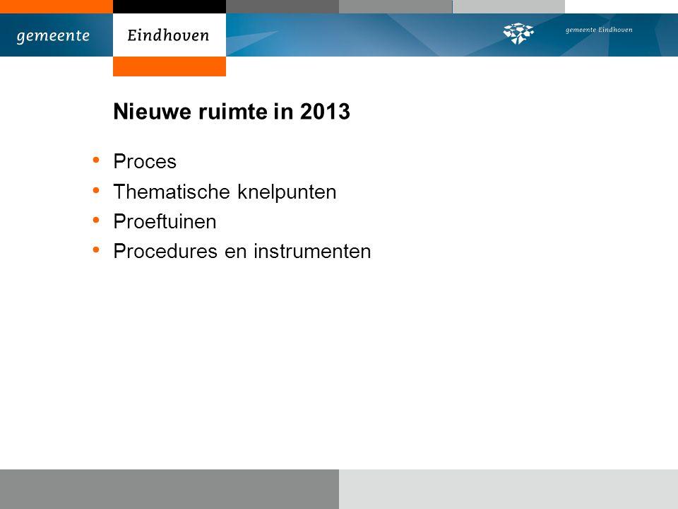 Nieuwe ruimte in 2013 Proces Thematische knelpunten Proeftuinen Procedures en instrumenten
