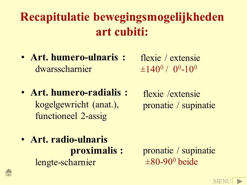 Recapitulatie bewegingsmogelijkheden art cubiti: Art. humero-ulnaris : dwarsscharnier Art. humero-radialis : kogelgewricht (anat.), functioneel 2-assi