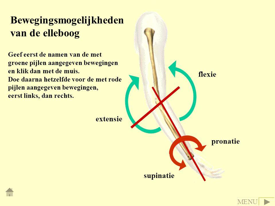 Bewegingsmogelijkheden van de elleboog Geef eerst de namen van de met groene pijlen aangegeven bewegingen en klik dan met de muis.