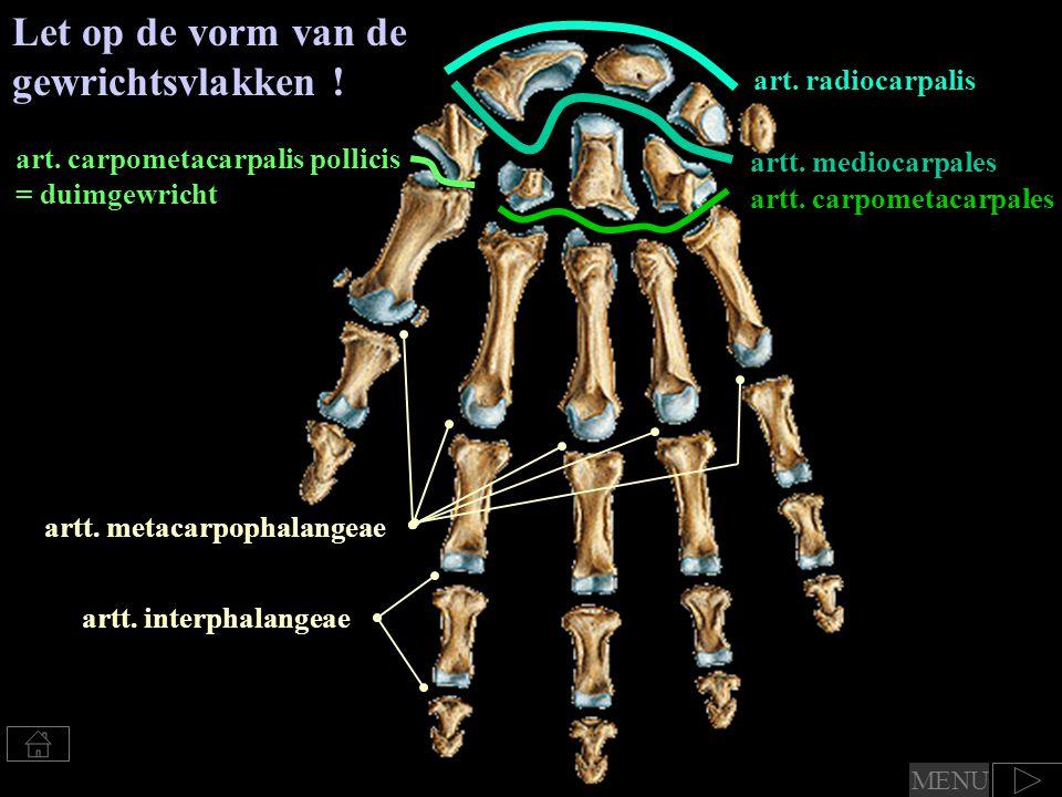 Benoem de standen van de duim ( Duimgewricht ) Combinatie: opponeren / reponeren (abductie en flexie) / (extensie en adductie) (beide + enige rotatie) flexie / extensie (  in vlak van de hand) (hier ook van het mcp en ip duimgewricht) abductie / adductie (  op vlak van de hand) MENU