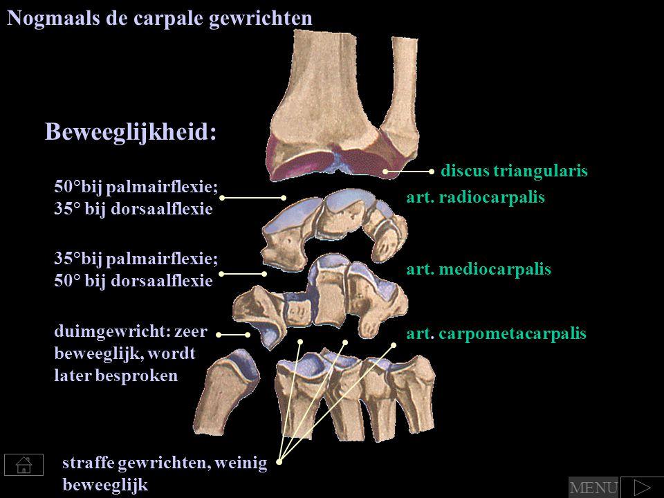 art. radiocarpalis art. mediocarpalis art. carpometacarpalis discus triangularis Nogmaals de carpale gewrichten Beweeglijkheid: 50°bij palmairflexie;