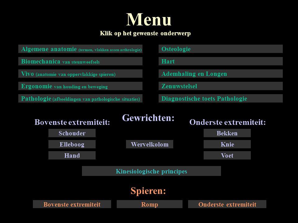 Onderste extremiteit:Bovenste extremiteit: Menu Gewrichten: Spieren: Klik op het gewenste onderwerp Algemene anatomie (termen, vlakken assen arthrolog