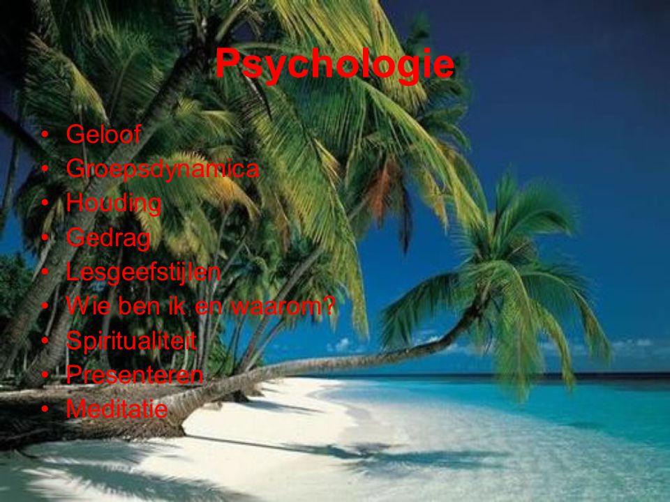 Psychologie Geloof Groepsdynamica Houding Gedrag Lesgeefstijlen Wie ben ik en waarom? Spiritualiteit Presenteren Meditatie