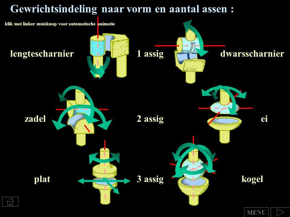 Gewrichtsindeling naar vorm en aantal assen : lengtescharnierdwarsscharnier1 assig 2 assig 3 assig ei platkogel MENU zadel klik met linker muisknop vo