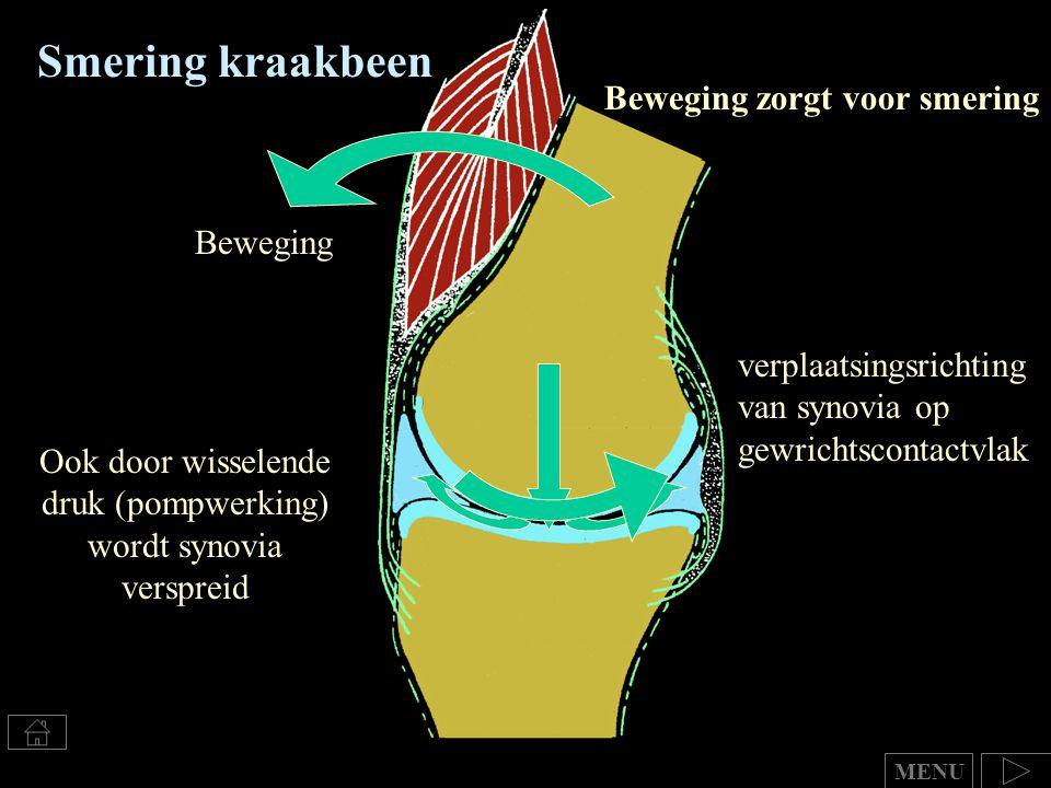 Smering kraakbeen Ook door wisselende druk (pompwerking) wordt synovia verspreid Beweging zorgt voor smering Beweging verplaatsingsrichting van synovi