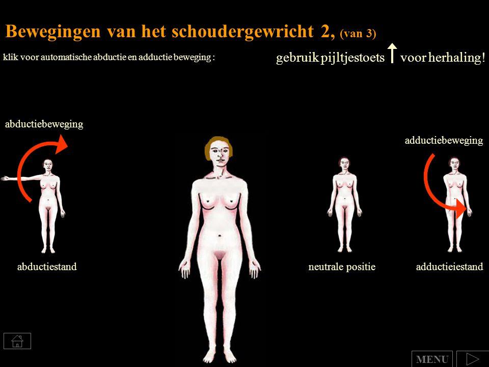 gebruik pijltjestoets voor herhaling! Bewegingen van het schoudergewricht 2, (van 3) MENU klik voor automatische abductie en adductie beweging : neutr