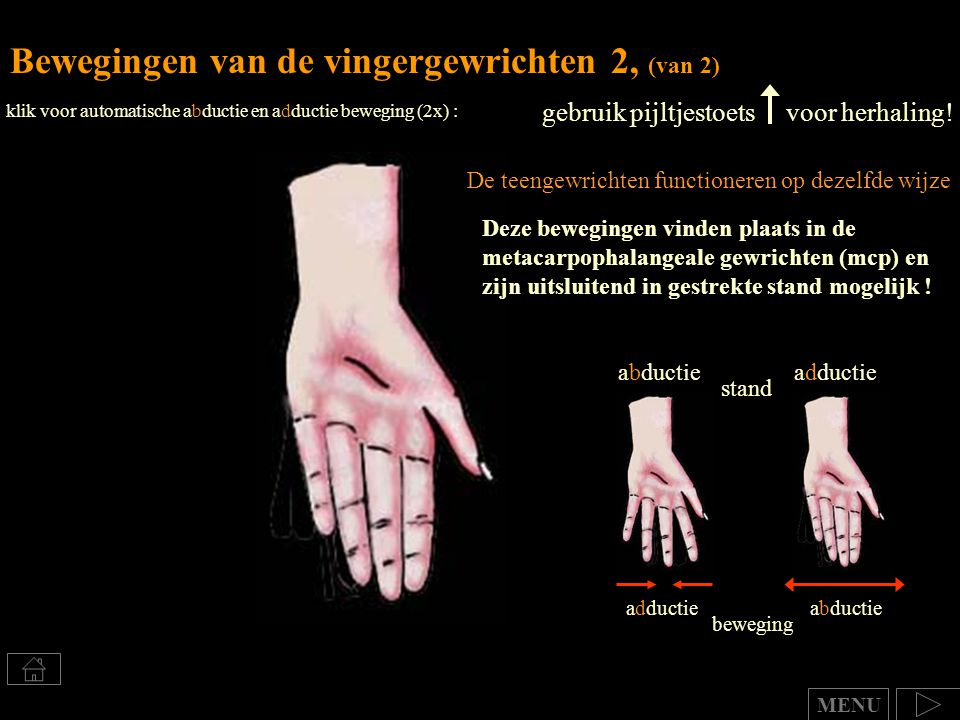 Bewegingen van de vingergewrichten 2, (van 2) gebruik pijltjestoets voor herhaling! klik voor automatische abductie en adductie beweging (2x) : abduct