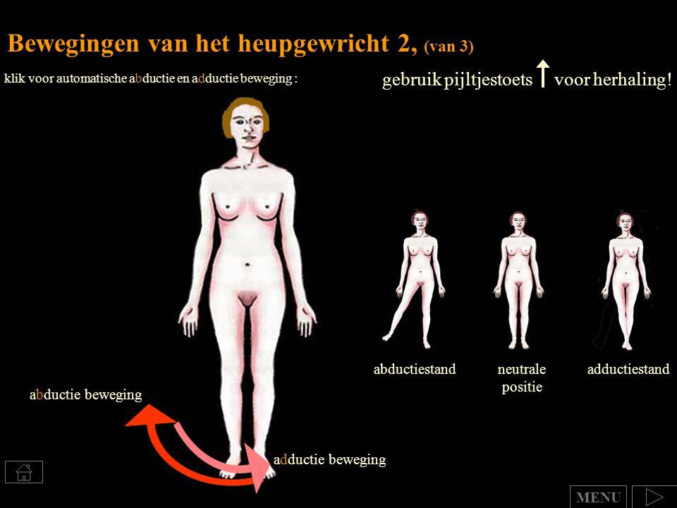 Bewegingen van het heupgewricht 2, (van 3) gebruik pijltjestoets voor herhaling! abductiestandadductiestandneutrale positie MENU klik voor automatisch