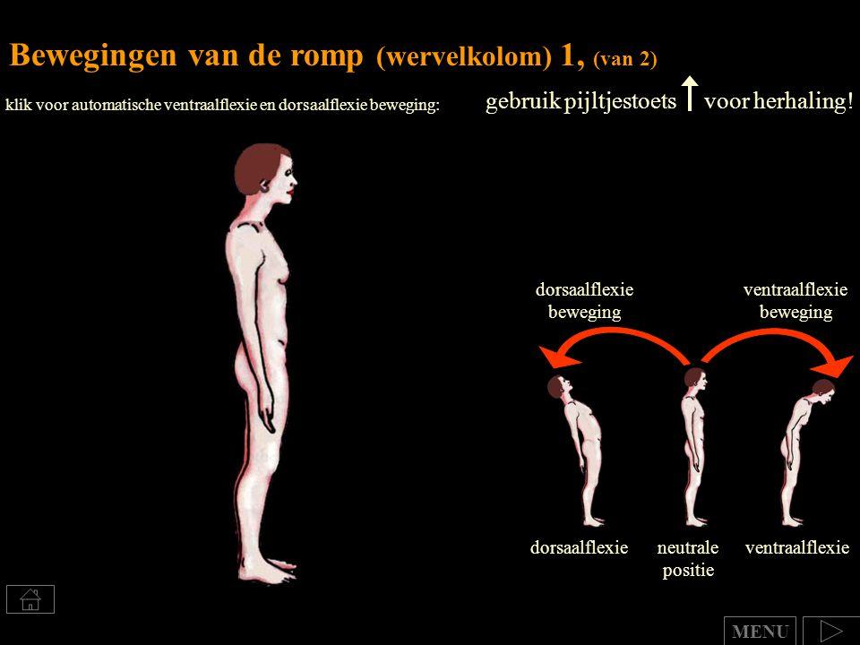 Bewegingen van de romp (wervelkolom) 1, (van 2) gebruik pijltjestoets voor herhaling! dorsaalflexieventraalflexieneutrale positie ventraalflexie beweg