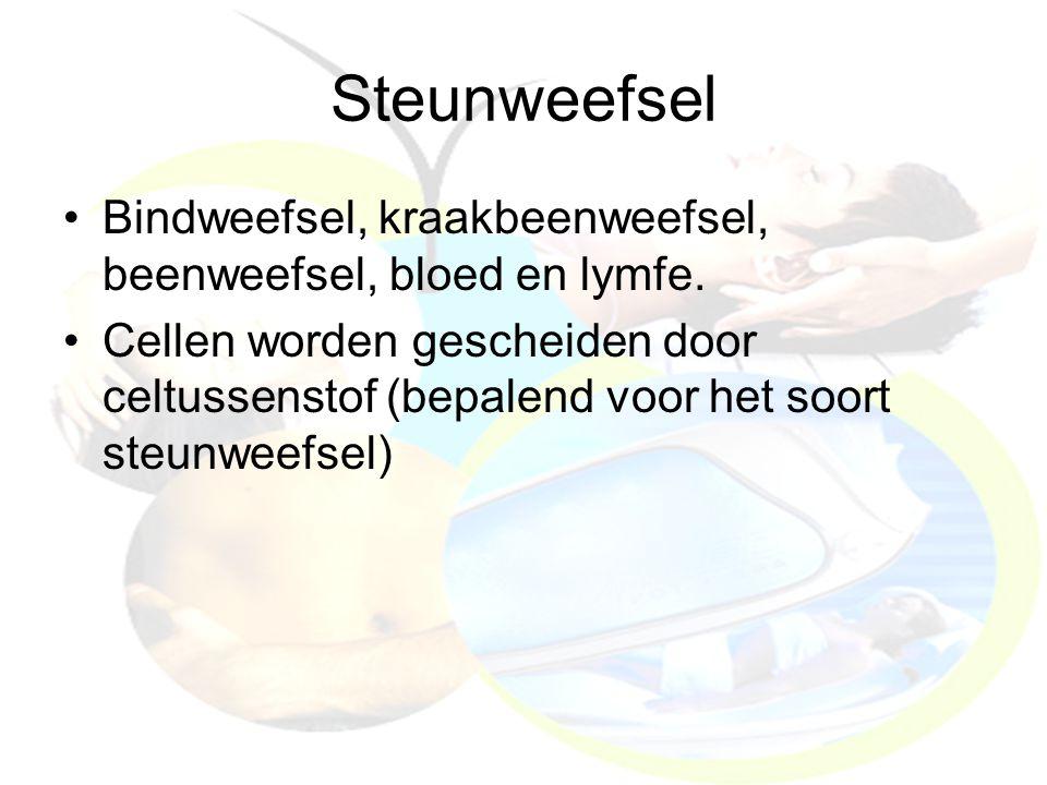 Steunweefsel Bindweefsel, kraakbeenweefsel, beenweefsel, bloed en lymfe. Cellen worden gescheiden door celtussenstof (bepalend voor het soort steunwee