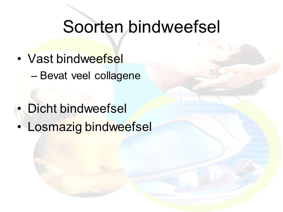 Soorten bindweefsel Vast bindweefsel –Bevat veel collagene Dicht bindweefsel Losmazig bindweefsel