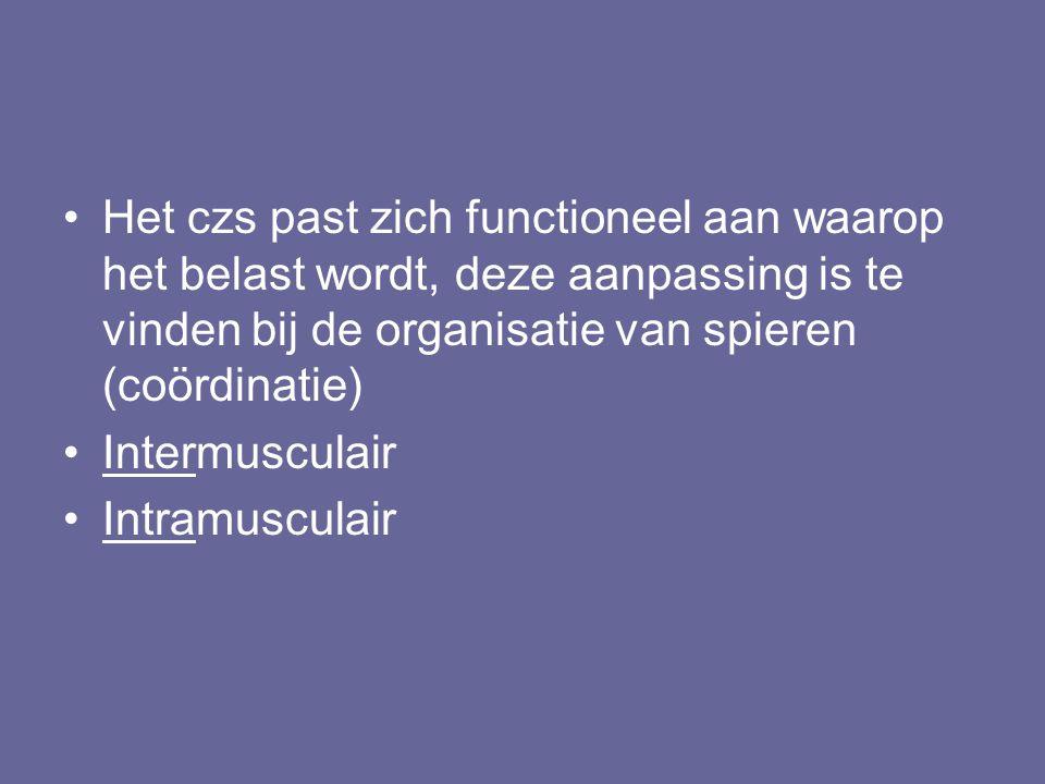 Het czs past zich functioneel aan waarop het belast wordt, deze aanpassing is te vinden bij de organisatie van spieren (coördinatie) Intermusculair In