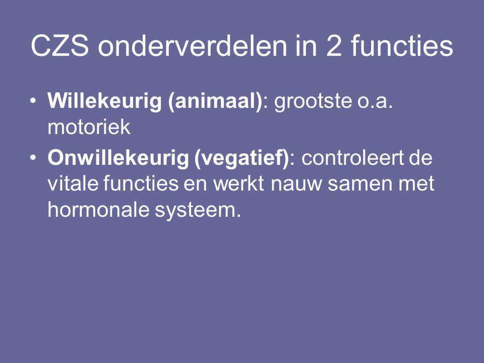 CZS onderverdelen in 2 functies Willekeurig (animaal): grootste o.a. motoriek Onwillekeurig (vegatief): controleert de vitale functies en werkt nauw s