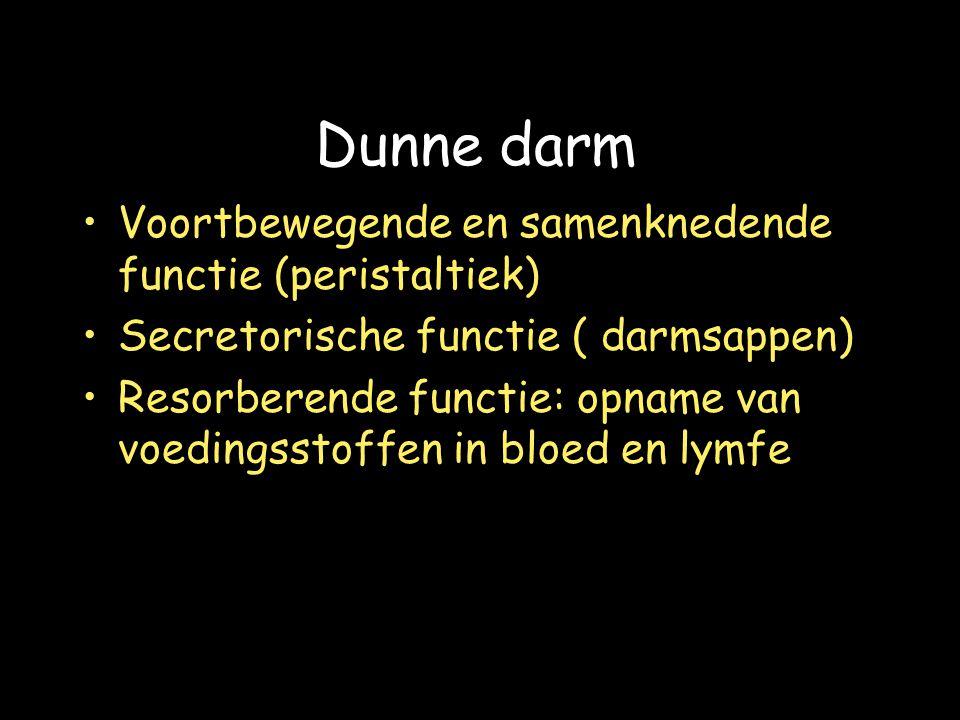 Dunne darm Voortbewegende en samenknedende functie (peristaltiek) Secretorische functie ( darmsappen) Resorberende functie: opname van voedingsstoffen in bloed en lymfe