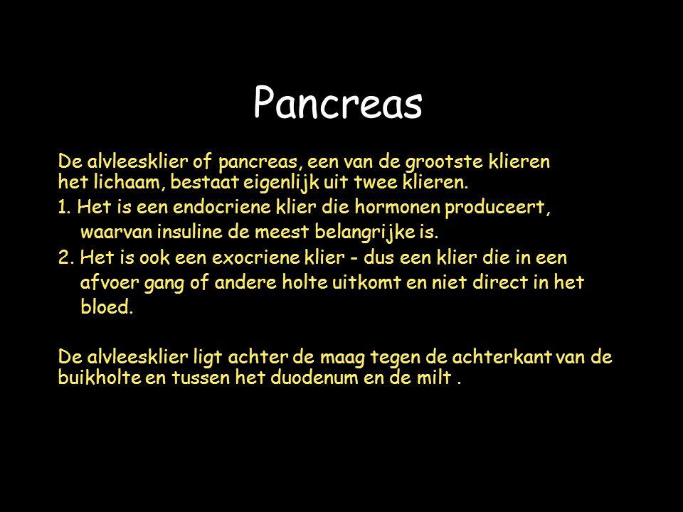 De alvleesklier of pancreas, een van de grootste klieren van het lichaam, bestaat eigenlijk uit twee klieren.