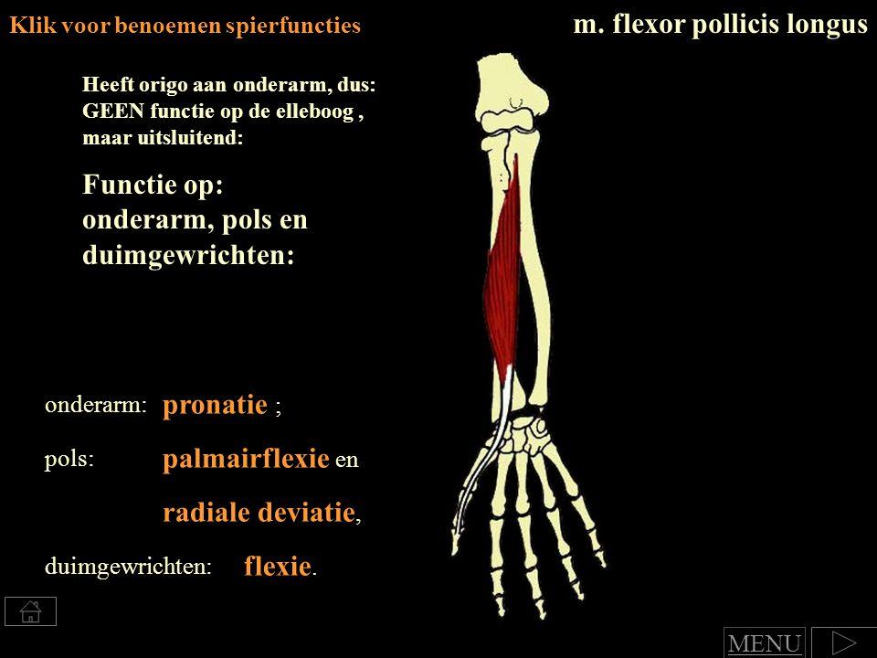 Klik voor benoemen spierfuncties m.flexor pollicis longus pronatie ; radiale deviatie, flexie.