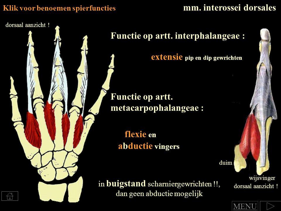 Klik voor benoemen spierfuncties mm.interossei dorsales Functie op artt.